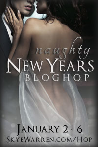 Naughty new year's blog hop